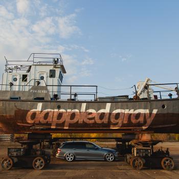 Dappled Gray / Mercedes-Benz s204
