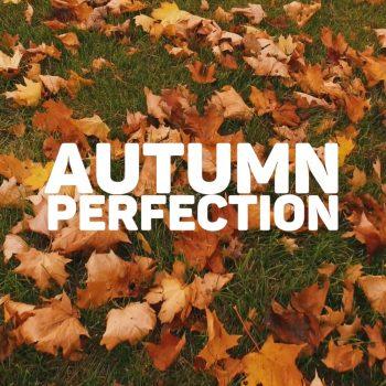 Autumn Perfection – Royal Garage. Video.