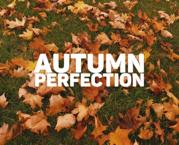 Autumn Perfection — Royal Garage. Video.